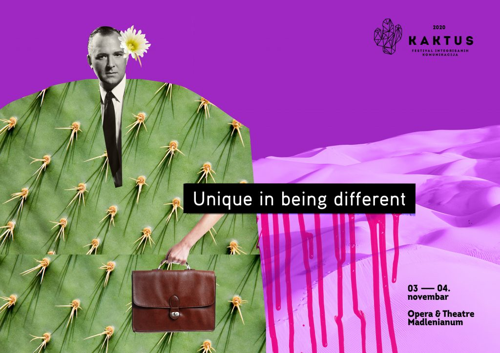 Kaktus - vizual